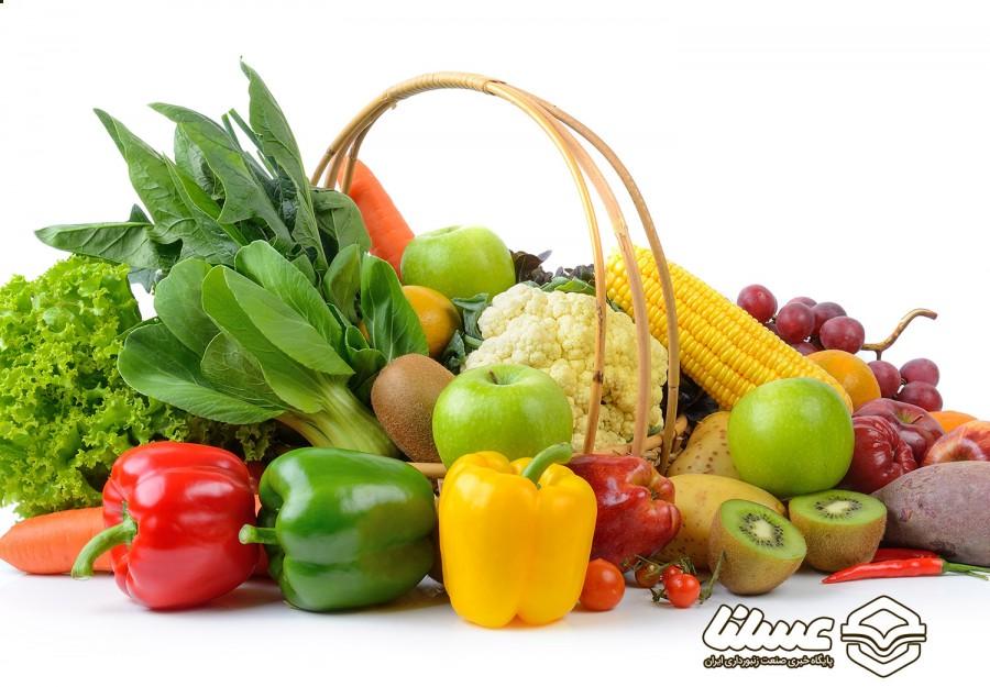 مقایسه گیاهخواری و وگان؛ کدام سالم تر است و کدام برای رژیم کاهش وزن موثرتر است؟