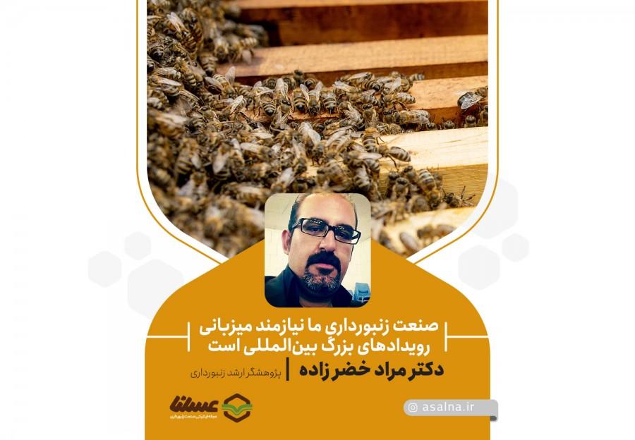 دکتر مراد خضر زاده در گفتگو با عسلنا، مطرح کرد:
