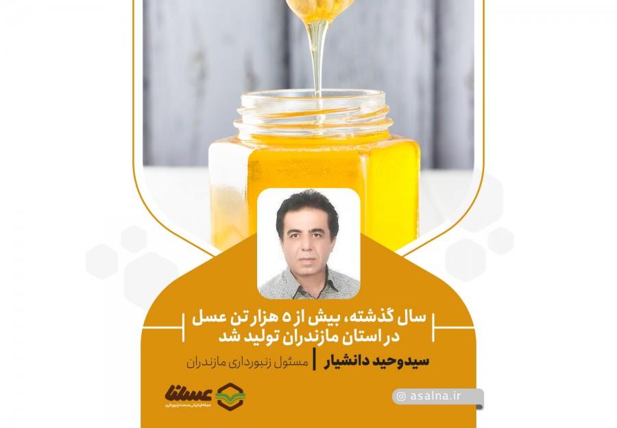 کارشناس مسئول زنبورداری استان مازندران، مطرح کرد: