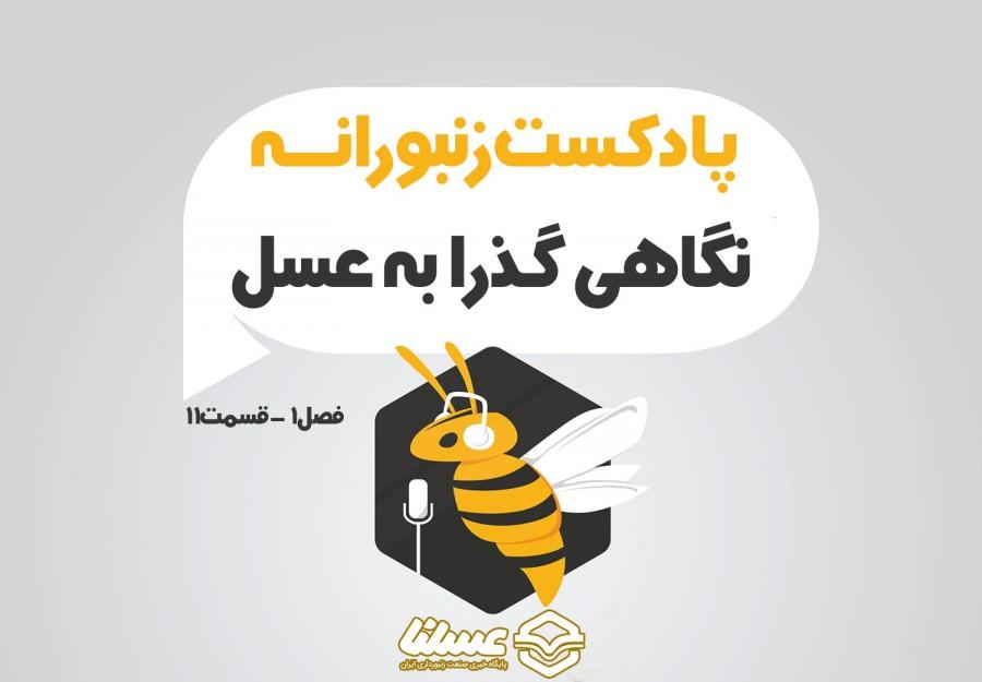 پادکست زنبورانه - فصل 1 قسمت 11 - نگاهی گذرا به عسل طبیعی