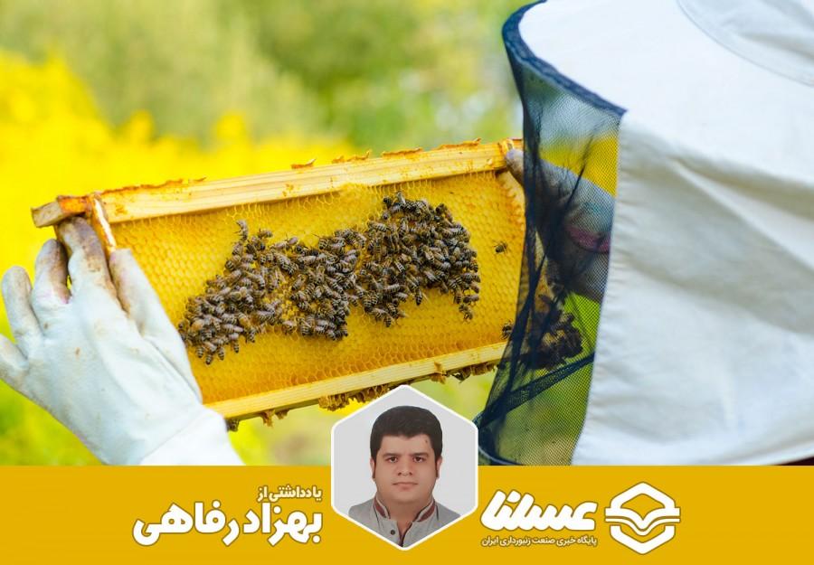 نقدی بر نحوه صدور دفترچه های زنبورداری