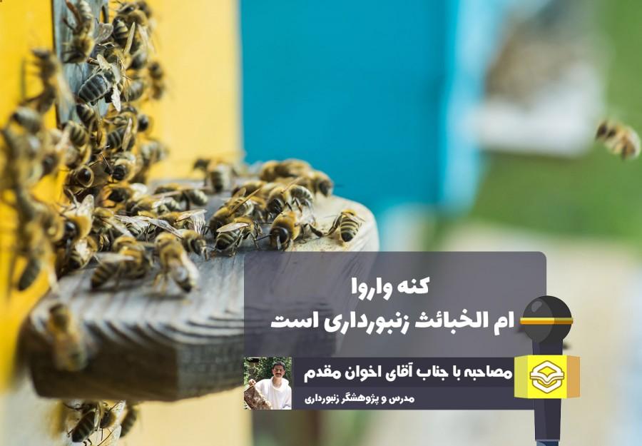 یک مدرس زنبورداری عنوان کرد