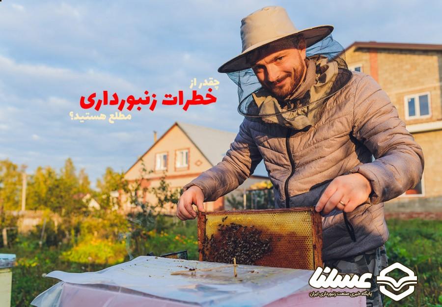 خطرات حرفه زنبورداری چیست؟