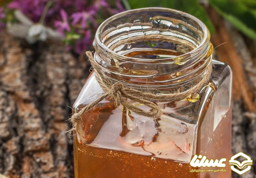 تنوع گیاهی از دلایل خوش طعم بودن عسل گیلان