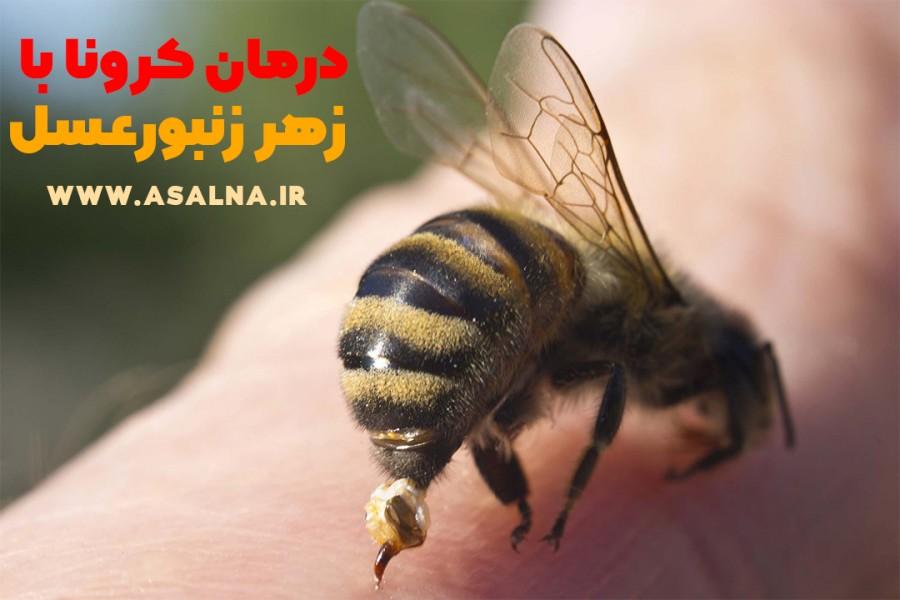 ویدئو: درمان کرونا با زهر زنبور عسل