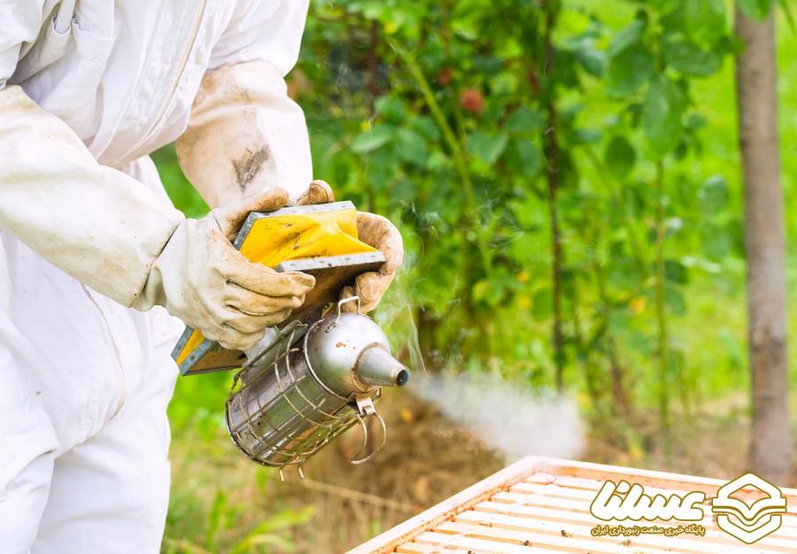 گزارش ویدئویی: پیش بینی برداشت ۵۰تُن عسل در سبزوار
