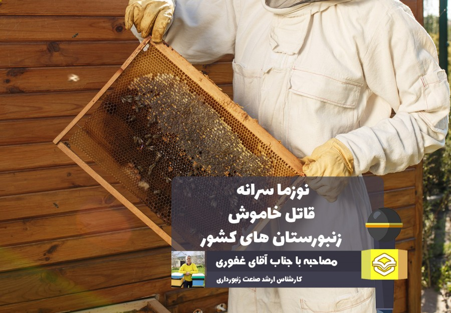 کارشناس ارشد پرورش زنبورعسل در گفتگو با عسلنا بیان کرد