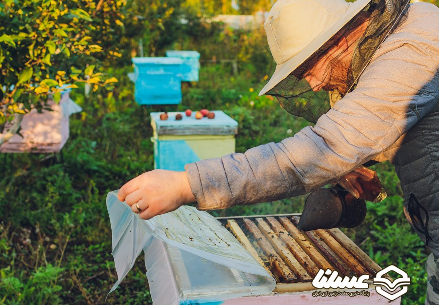 تولید بیش از 5 تن فراورده عسل در خراسان جنوبی