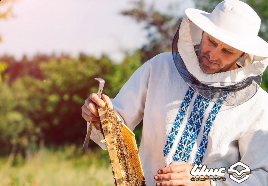 میزان عسل تولید شده در لرستان به 2800 تن رسید