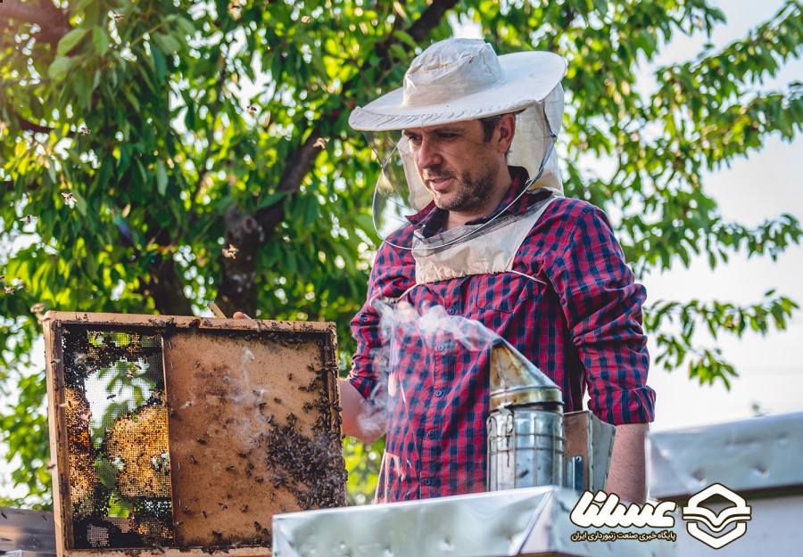 آموزش زنبورداری از طریق فنی حرفه ای برای مردم کوهرنگ