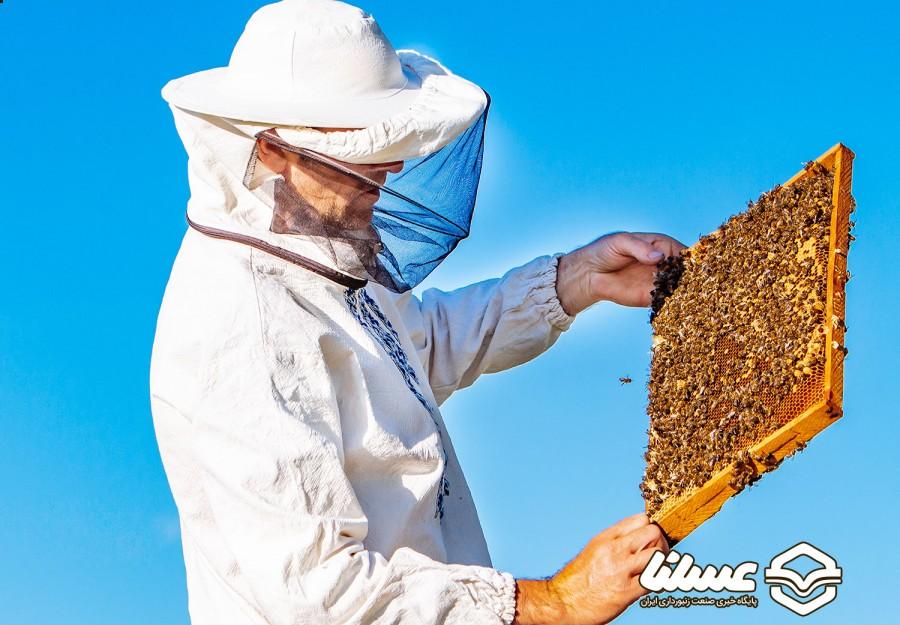 مدیرعامل صندوق حمایت از توسعه صنعت زنبورداری کشور  در گفتگو با عسلنا خبر داد
