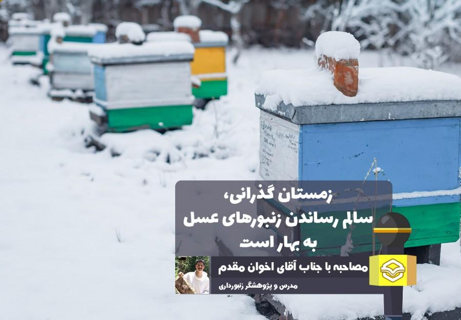 گفتگوی اختصاصی عسلنا با کارشناس ارشد پرورش زنبورعسل