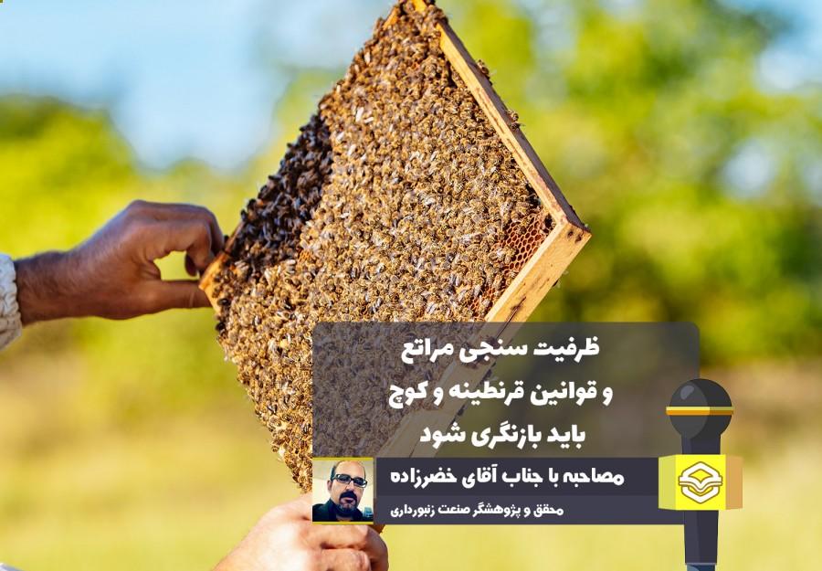 پژوهشگر ارشد مطالعات زنبورداری در گفتگو با عسلنا
