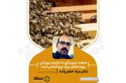 صنعت زنبورداری ما نیازمند میزبانی رویدادهای بزرگ بینالمللی است