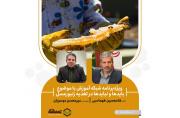 موسویان: زنبورعسل بهعنوان یک نهاده زنده در بخش کشاورزی است | طهماسبی: سمپاشیهای بیرویه و داروهای غیرمجاز باید کنترل شود