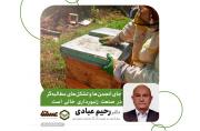 دکتر رحیم عبادی: وزارت جهاد کشاورزی به برنامه راهبردی کلان برای توسعه زنبورداری نیاز دارد/ جای انجمنها و تشکل های مطالبهگر در صنعت زنبورداری خالی است