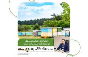 بانکی پور: استراتژی اصلی صندوق توسعه بازار زنبورداری است