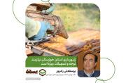 زنبورداری استان خوزستان نیازمند توجه و تسهیلات ویژه است