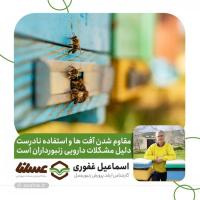 مقاوم شدن آفت ها و استفاده نادرست دلیل مشکلات دارویی زنبورداران است