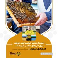 زنبوردار ما نمیتواند یا نمیخواهد برای داروهای مناسب هزینه کند