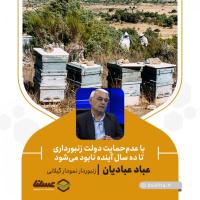 با عدمحمایت دولت زنبورداری تا ده سال آینده نابود میشود