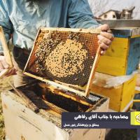 نگاه کمی و آماری مسئولین، منشا اصلی بازار آشفته عسل ایران است