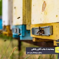 تبیین استاندارد تخصصی و درجهبندی عسلها، نیاز مبرم زنبورداری ایران است