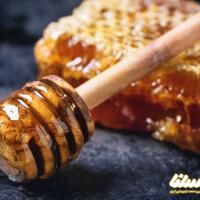 وقت آن رسیده کیفیت عسل زنبورستان خود را افزایش دهید!