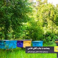 دولت بخشی از تولیدات عسل مرغوب زنبورداران را تضمینی بخرد