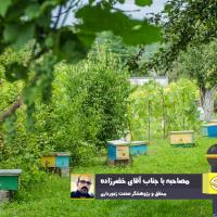 بیان اطلاعات و آمار صنعت زنبورداری و دستهبندی مشکلات و راهکارها