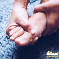 درمان نقرس به کمک بره موم