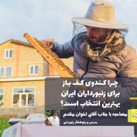 چرا کندوی کف باز برای زنبورداران ایران بهترین انتخاب است؟