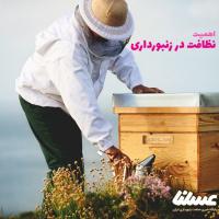 اهمیت نظافت در زنبورداری