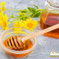 پیشبینی افزایش ۳۰ درصدی تولید عسل در فامنین