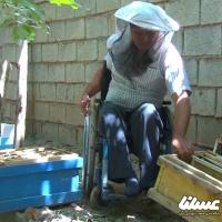 همت بلند جانباز نجف آبادی در تولید عسل