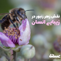 آیا زهر زنبور می تواند به زیبایی پوست و مو کمک کند؟