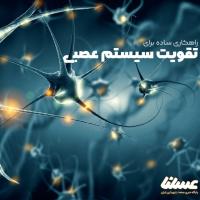 ژل رویال چطور به تقویت سیستم عصبی کمک می کند؟