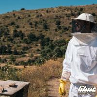صرفه جویی در مصرف آب و نگه داری زنبورها برای مقابله با اثرات گرمایش زمین