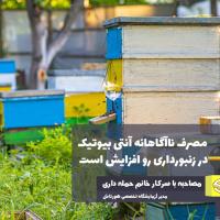 مصرف ناآگاهانه آنتی بیوتیک در زنبورداری رو افزایش است