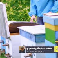 مضیقه عشایر اصفهان در تامین نهاده های زنبور