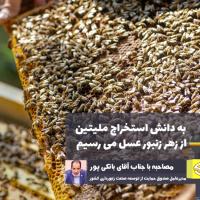 صنعت زنبورداری در حال پوست اندازی است