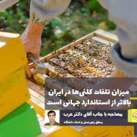 میزان تلفات کلنیهای زنبورعسل کشور هشداردهنده است