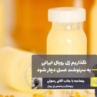 نگذاریم تولید ژل رویال کشور به سرنوشت عسل ایرانی دچار شود