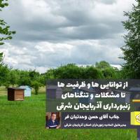 زنبورداری استان آذربایجان شرقی در یک نگاه/ از توانایی ها و ظرفیت ها تا مشکلات و تنگناها