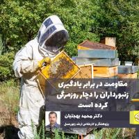 فقدان مدیریت اصولی و علمی زنبورستانها / مقاومت در برابر یادگیری زنبورداران را دچار روزمرگی کرده است
