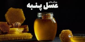 ویژگی های عسل پنبه که قبل از خرید باید بدانید