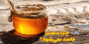 چرا عسل می تواند مدت زیادی خاصیت خود را حفظ کند و فاسد نشود؟