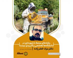رشتههای مرتبط با زنبورداری در دانشگاهها تخصصی و کاربردی نیست