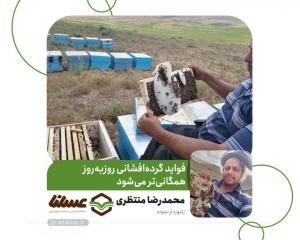 ساعتی با محمدرضا منتظری زنبوردار نمونه استان اصفهان