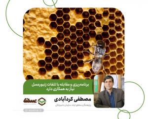 تعامل اتحادیهها و تعاونیها با سازمان دامپزشکی قویتر شود/ برنامهریزی و مقابله با تلفات زنبورعسل نیاز به همکاری دارد